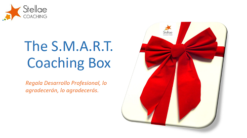THE SMART COACHING BOX 500
